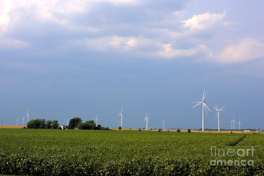 Plains Wind Farm Photograph  - Plains Wind Farm Fine Art Print