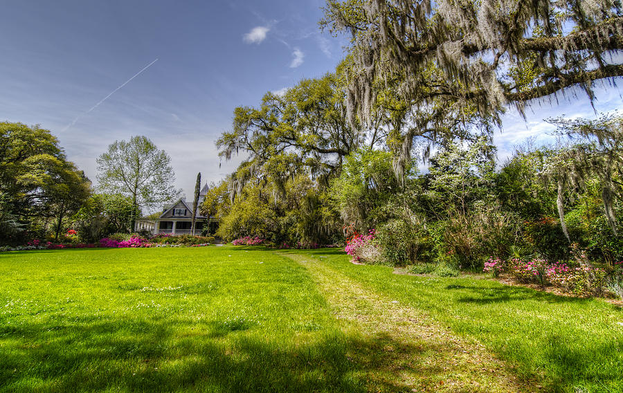 Plantation Home Photograph  - Plantation Home Fine Art Print