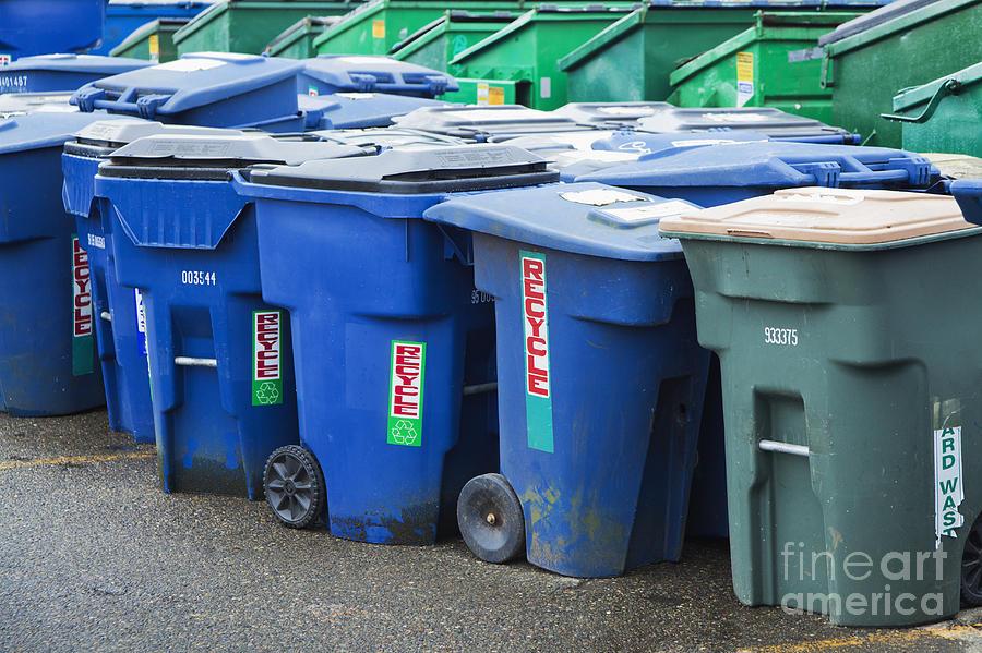 Plastic Garbage Bins Photograph