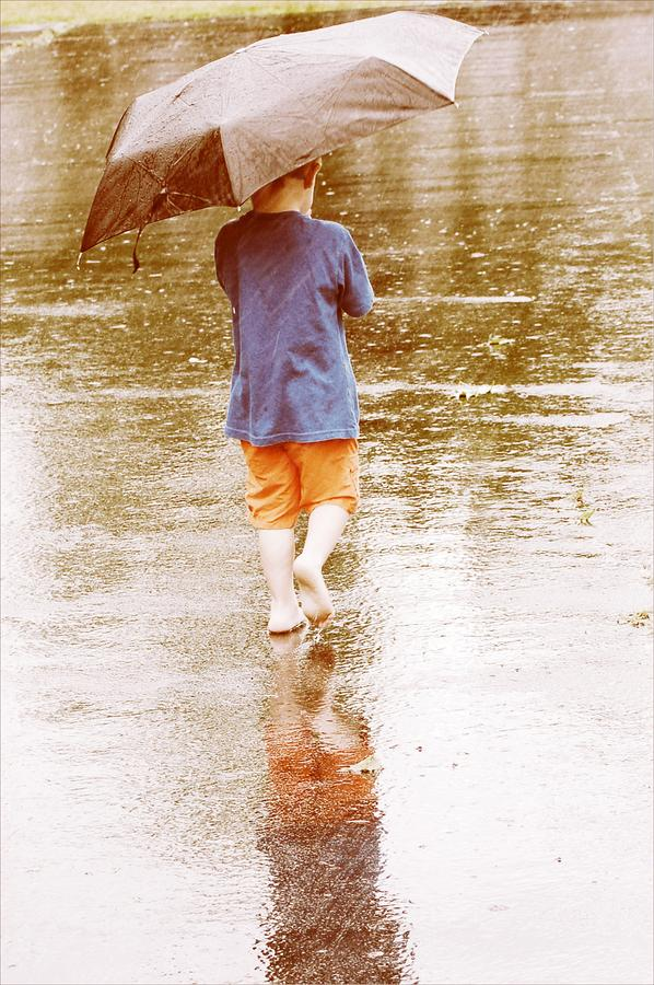 Playing In The Rain Photograph  - Playing In The Rain Fine Art Print