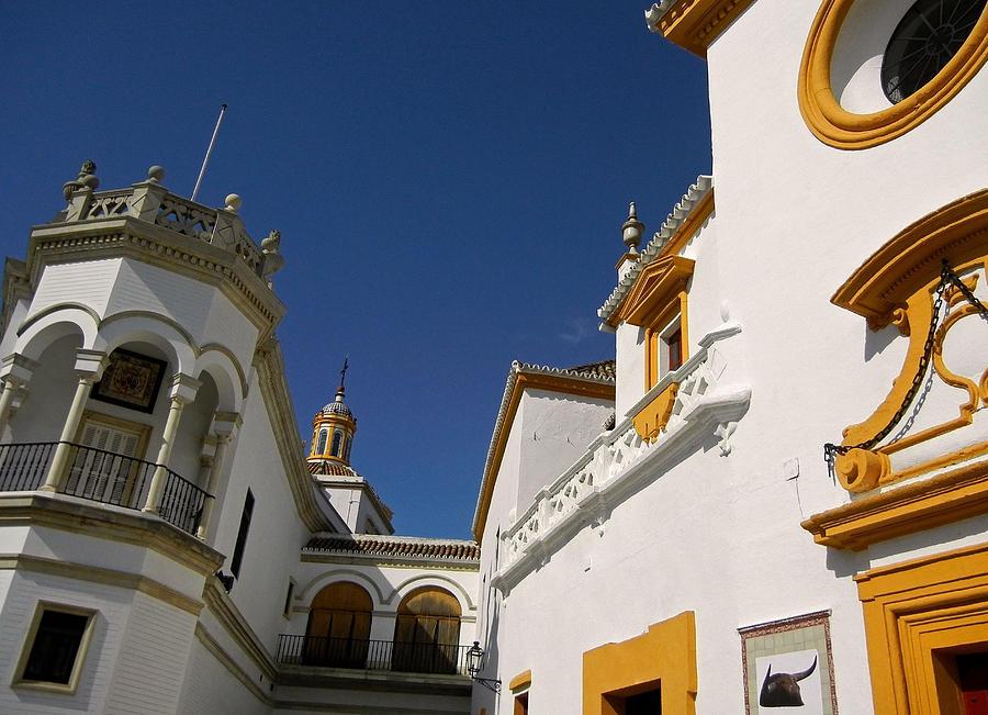 Plaza De Toros De La Real Maestranza - Seville Photograph