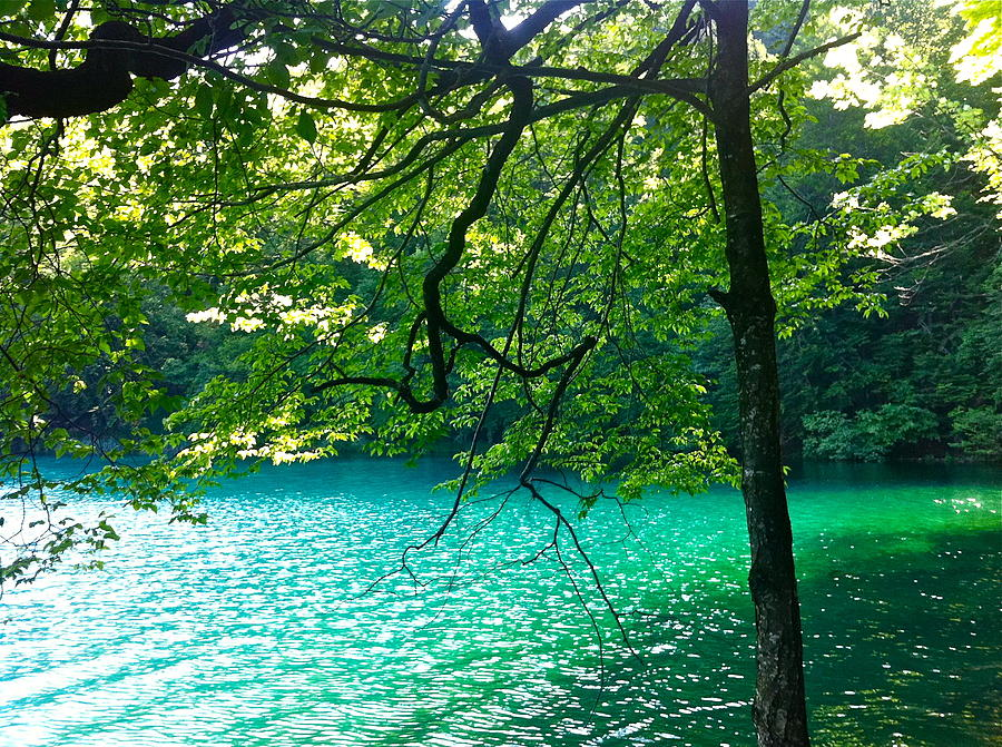 Plitvicka Jezera  Blue Lake Photograph