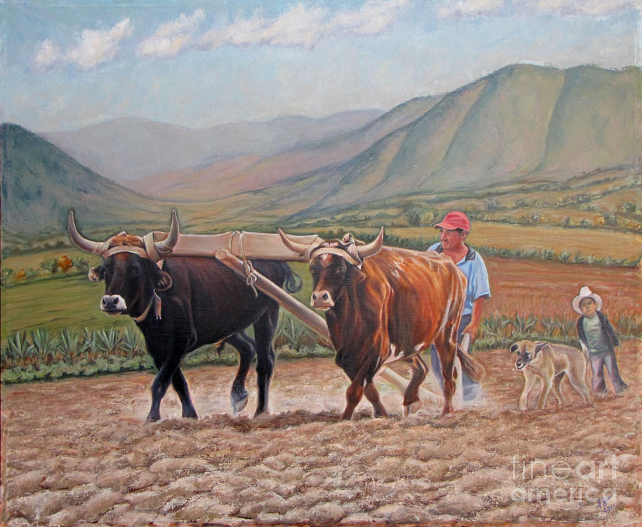 Ploughing In Ocotlan Painting