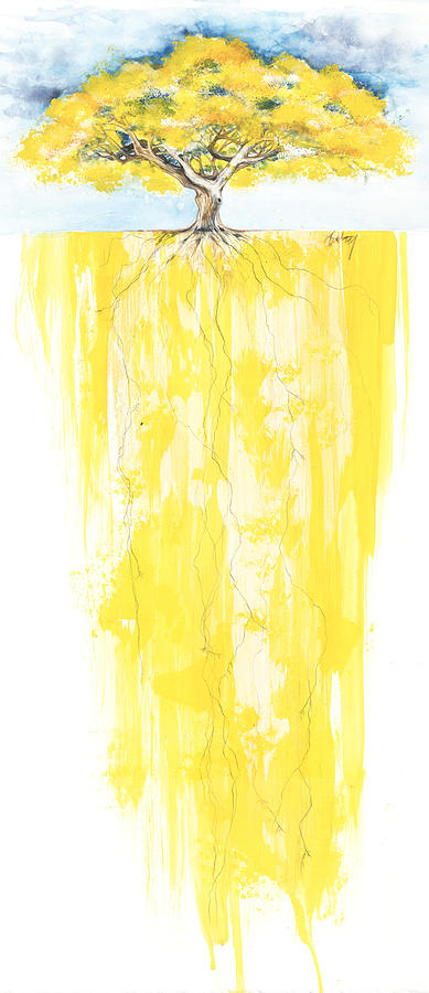 Poinciana Tree Yellow Mixed Media  - Poinciana Tree Yellow Fine Art Print