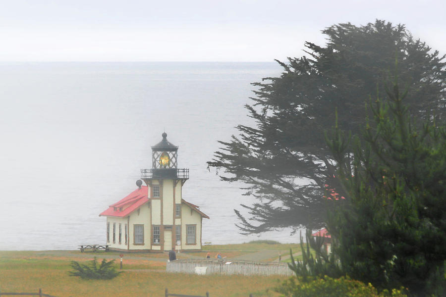 Point Cabrillo Light Station Ca - Lighthouse In Damp Costal Fog Photograph  - Point Cabrillo Light Station Ca - Lighthouse In Damp Costal Fog Fine Art Print