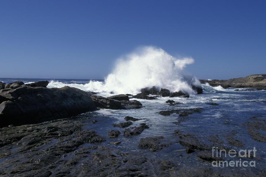 Point Lobos Seascape 2 Photograph