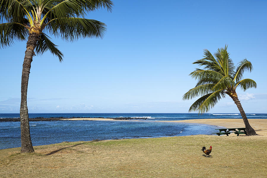 Poipu Beach Photograph