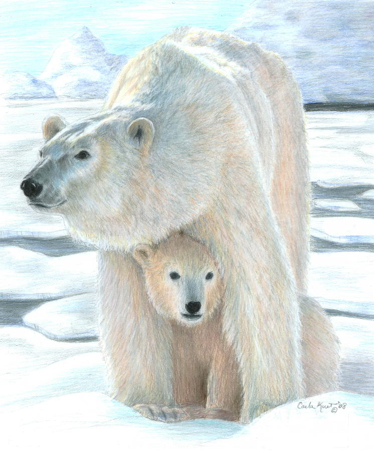 Polar Love Drawing