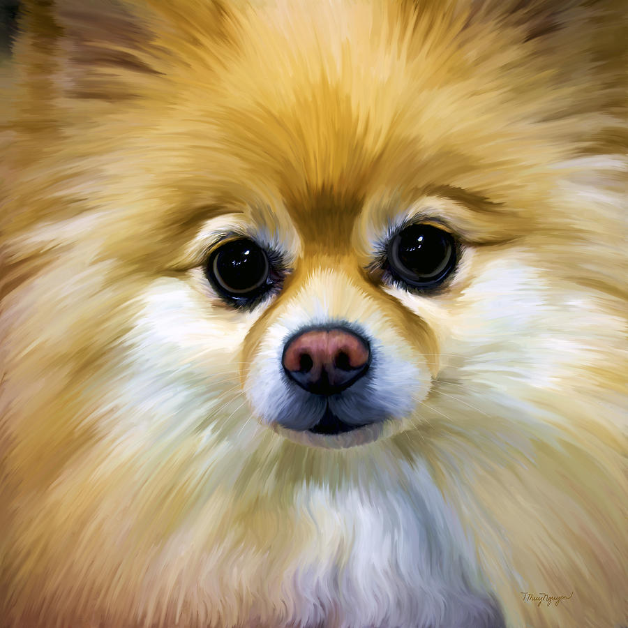 Pomeranian Digital Art