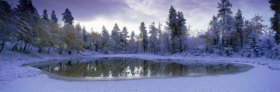Pond And Fresh Snowfall, Near 70 Mile Photograph