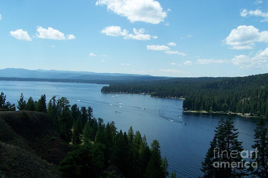 Ponderosa Park - Payette Lake Photograph  - Ponderosa Park - Payette Lake Fine Art Print