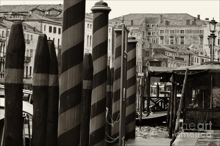 Ponte Rialto And Canale Grande In Venice Photograph