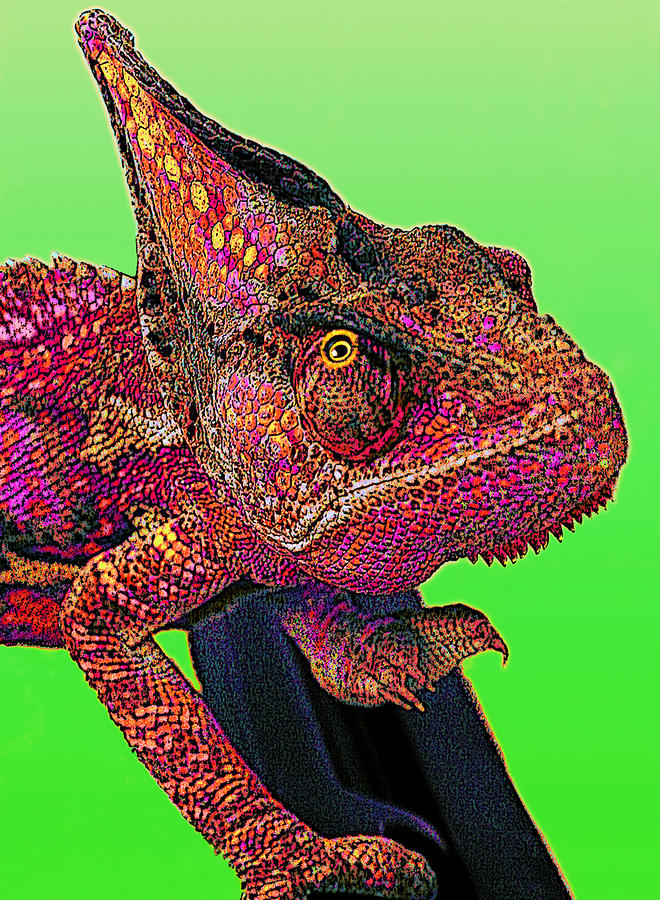 Pop Art Chameleon Digital Art  - Pop Art Chameleon Fine Art Print