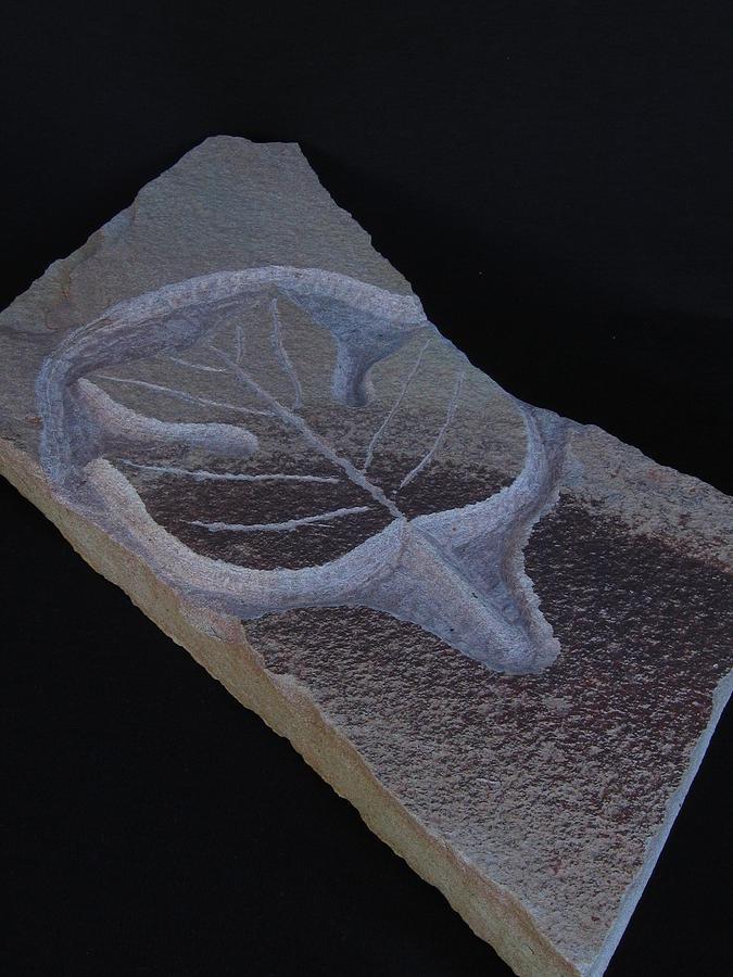 Poplar Leaf Sculpture