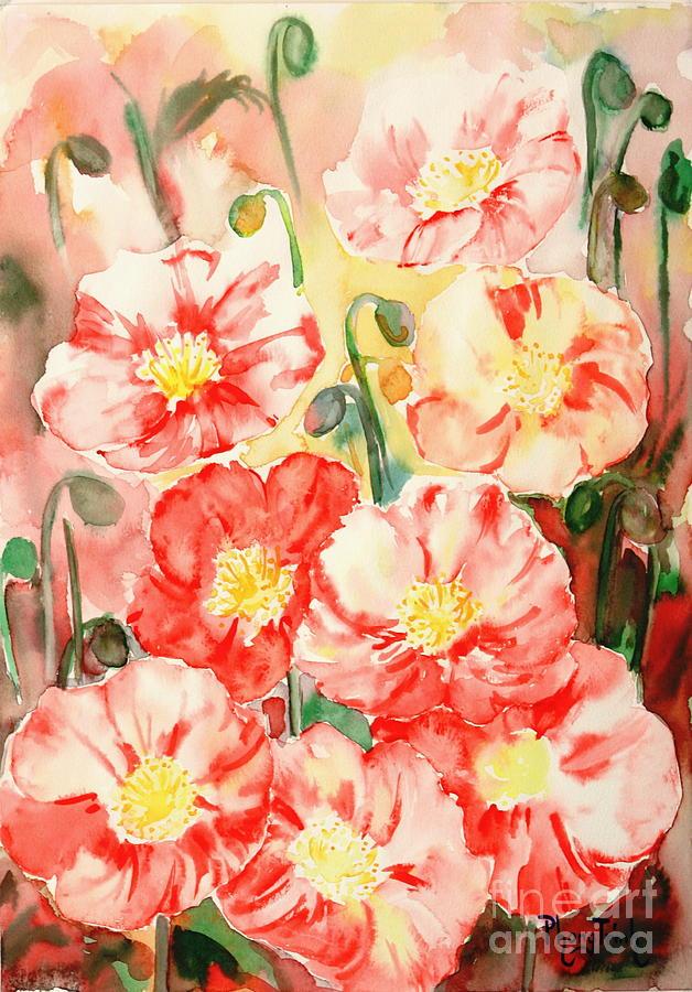 Poppy 1 Painting