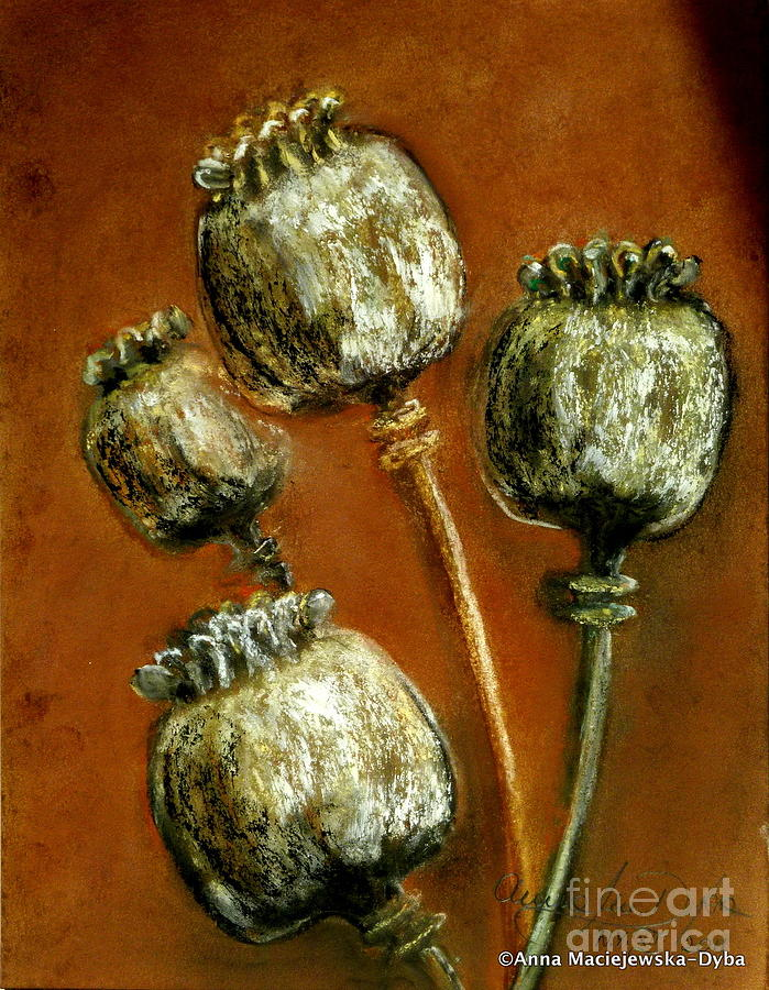 Poppy Seed Heads Painting  - Poppy Seed Heads Fine Art Print