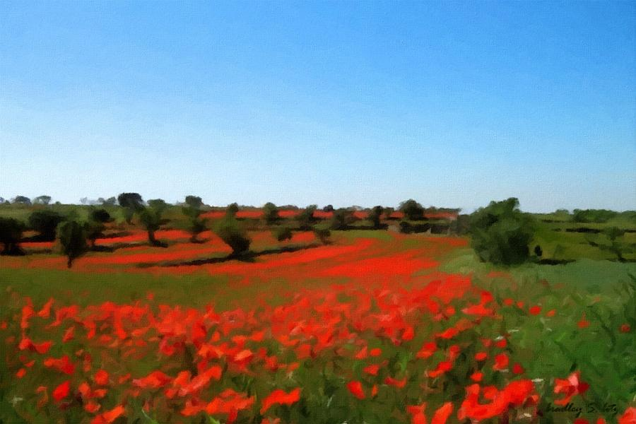 Poppyfield In Bloom Painting  - Poppyfield In Bloom Fine Art Print