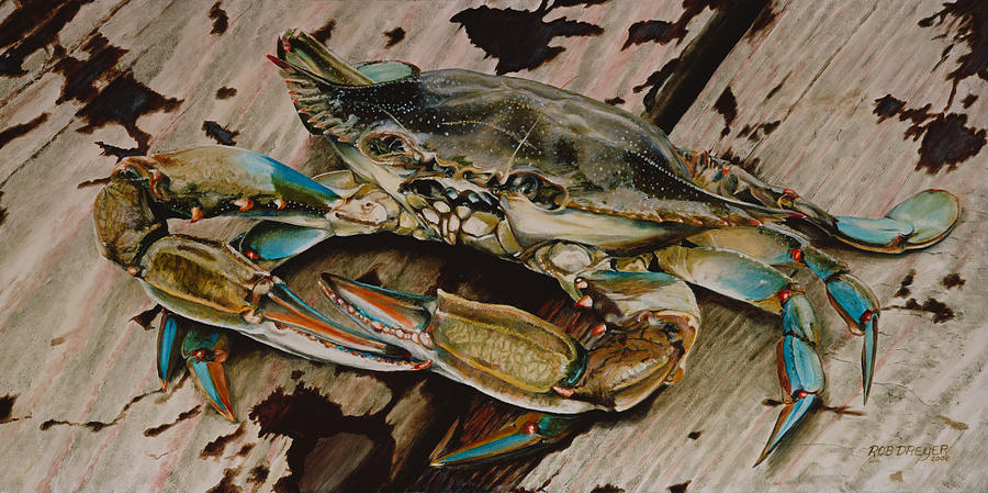 Portrait Of A Blue Crab Painting  - Portrait Of A Blue Crab Fine Art Print