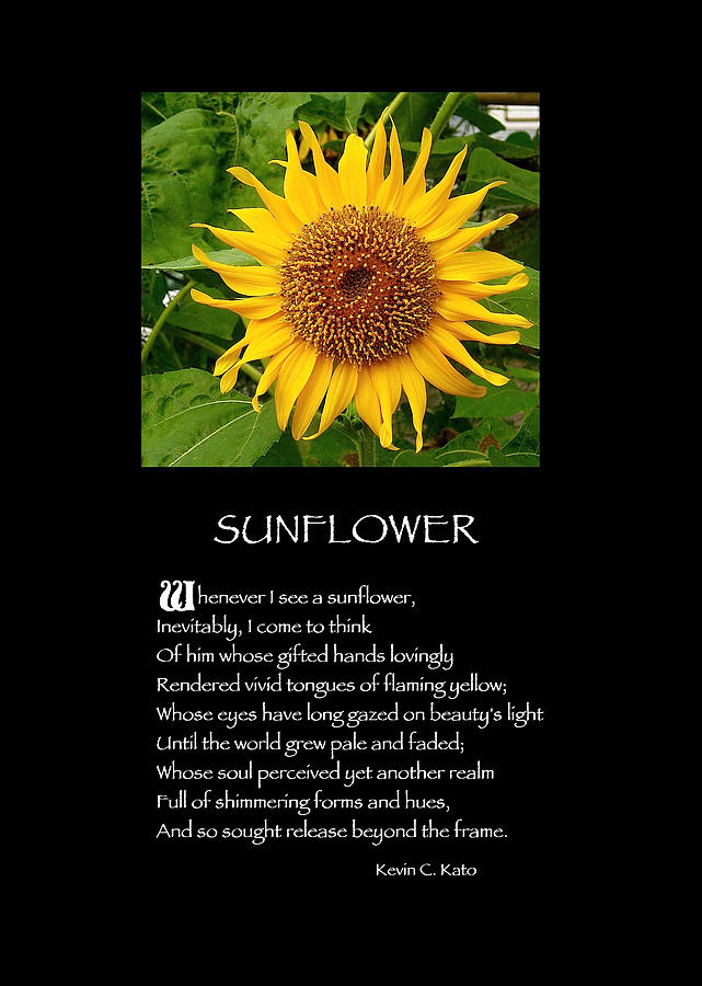 Poster Poem Sunflower Photograph By Poetic Expressions