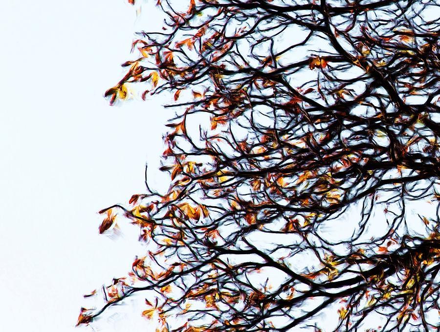 Praha Tangled Tree Painting