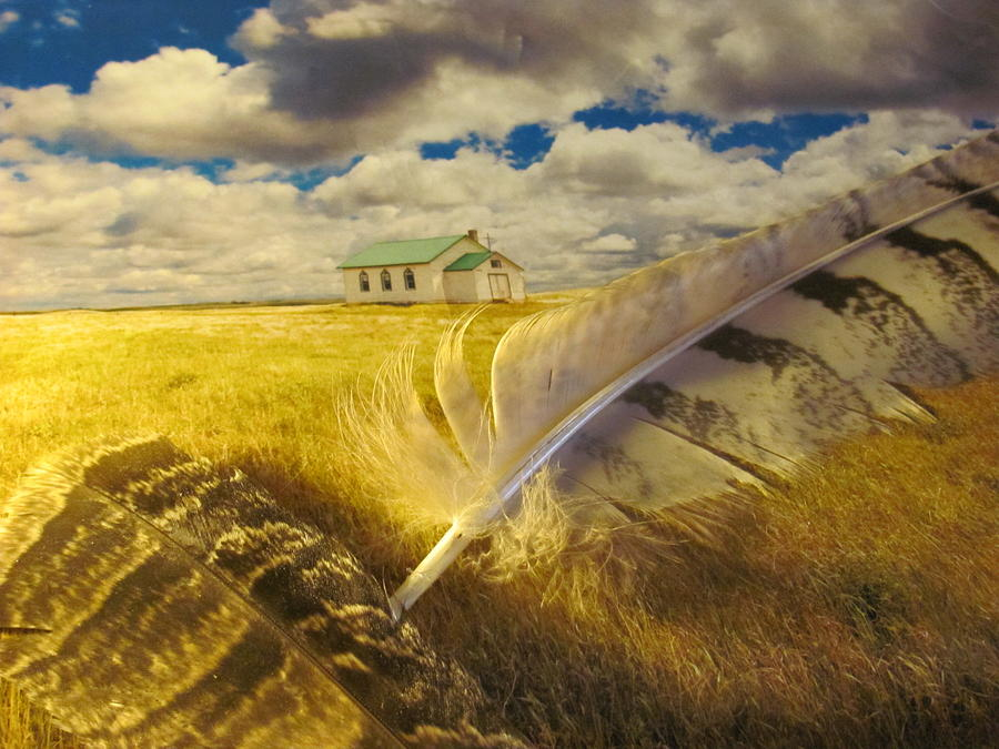 Prairie Feathers Photograph