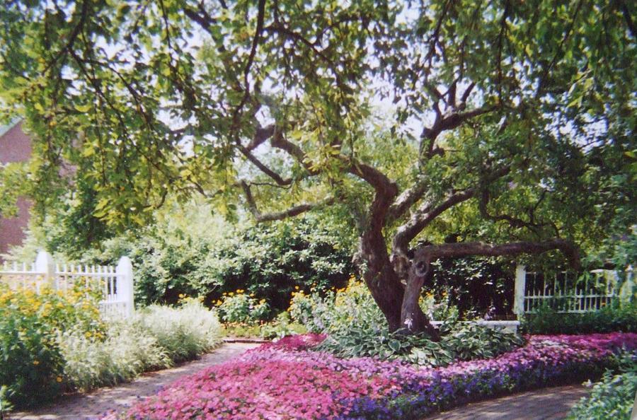 Prescott Park Portsmouth Nh Photograph
