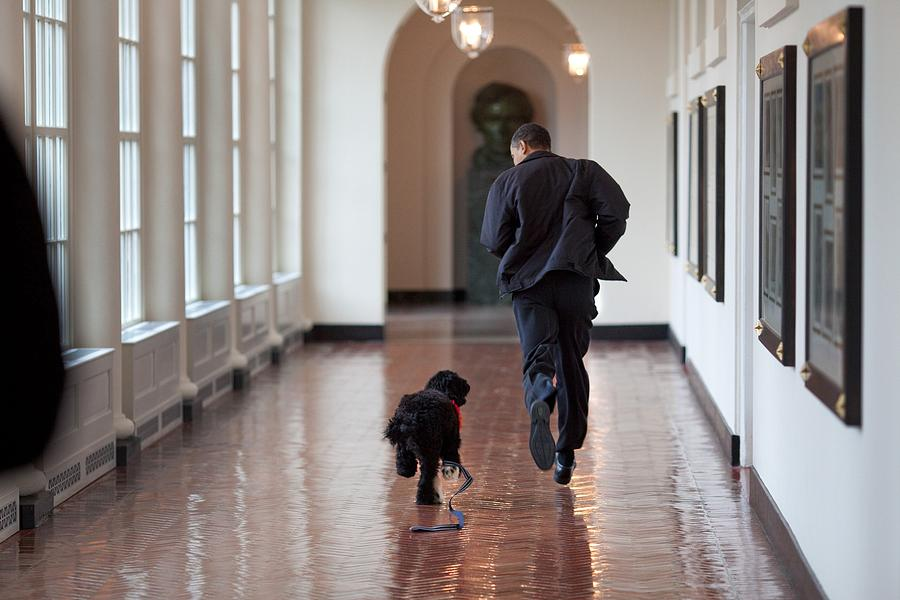 President Barack Obama Runs Photograph  - President Barack Obama Runs Fine Art Print
