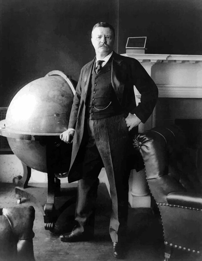 President Theodore Roosevelt Painting