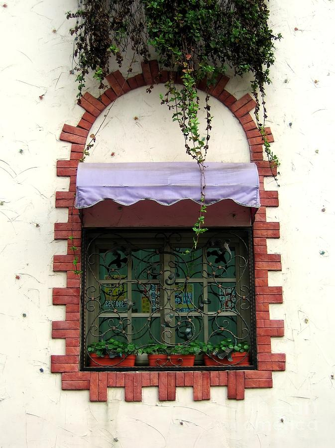 Pretty Decorated Window Photograph  - Pretty Decorated Window Fine Art Print