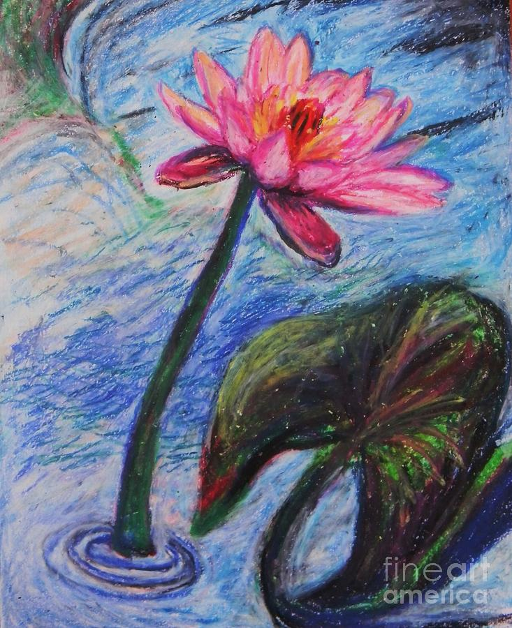 Pretty Pink In The Pond Pastel  - Pretty Pink In The Pond Fine Art Print