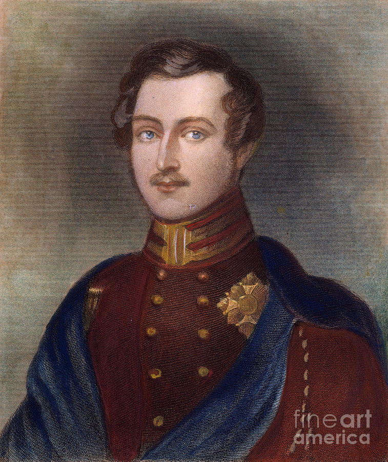 Prince Albert Of England by Granger
