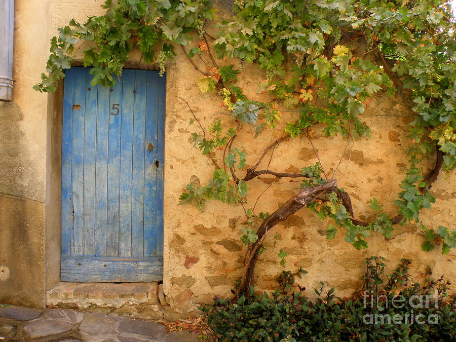 Provence Door 5 Photograph