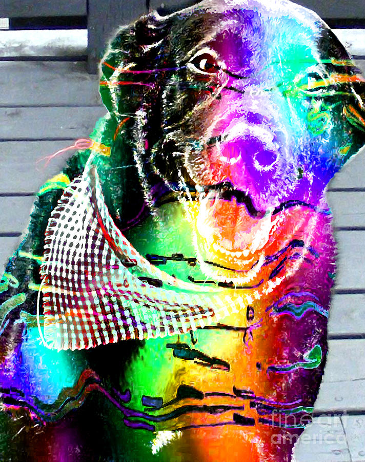 Psychedelic Black Lab With Kerchief Digital Art  - Psychedelic Black Lab With Kerchief Fine Art Print