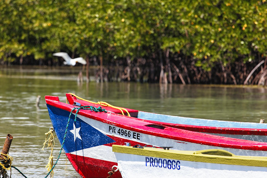 Puerto Rican Fishing Boats Photograph