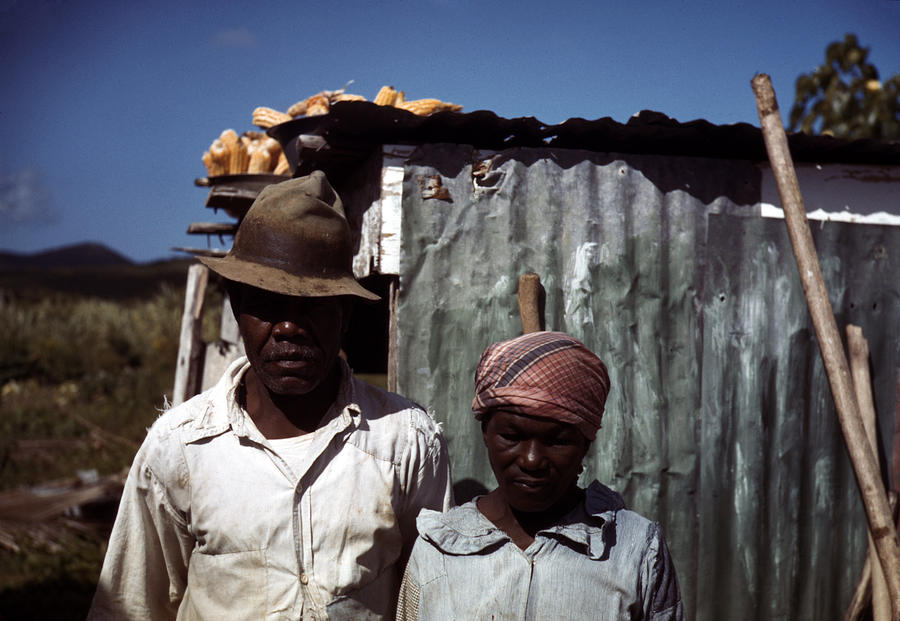 1930s Photograph - Puerto Rico. Tenant Farmers by Everett