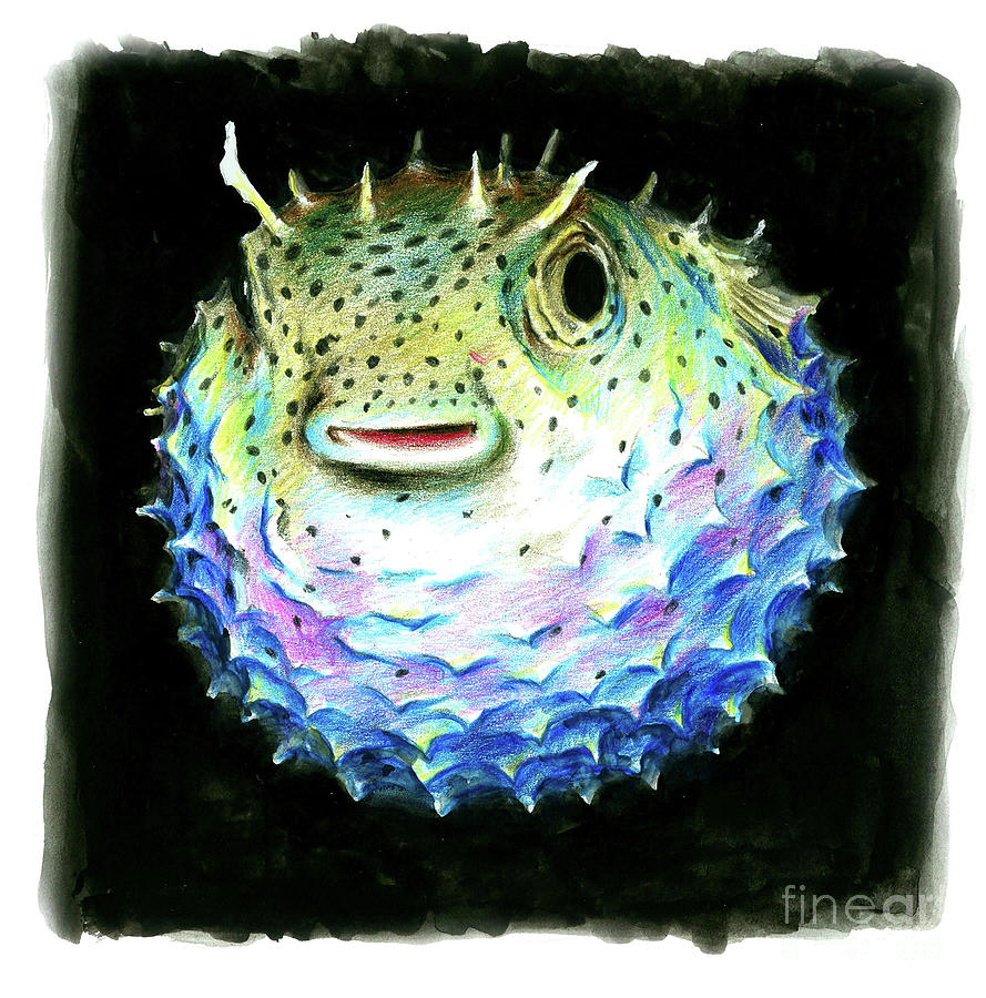 Puffer fish by muaviath ali for Puffer fish art