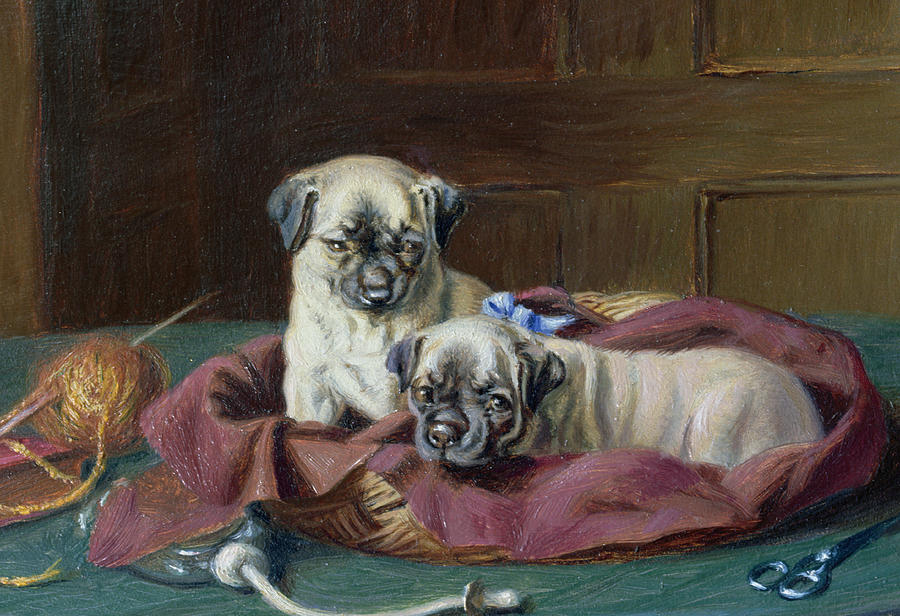 Pug Puppies In A Basket Painting