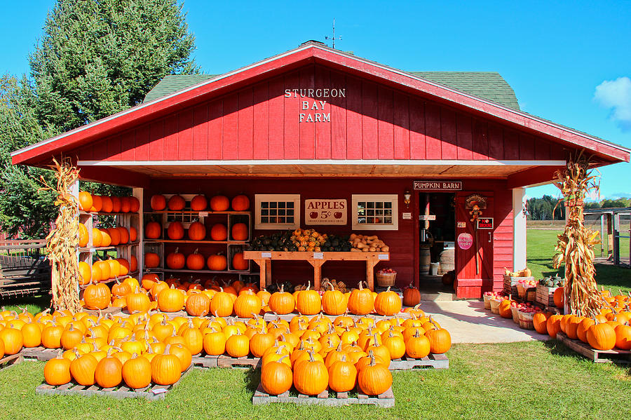 Pumpkin Barn Photograph  - Pumpkin Barn Fine Art Print