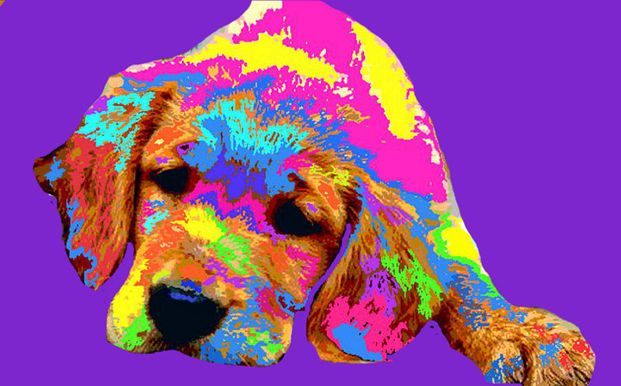 Puppy  Digital Art  - Puppy  Fine Art Print