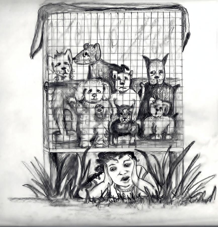 Puppy Mill Discovered Drawing  - Puppy Mill Discovered Fine Art Print