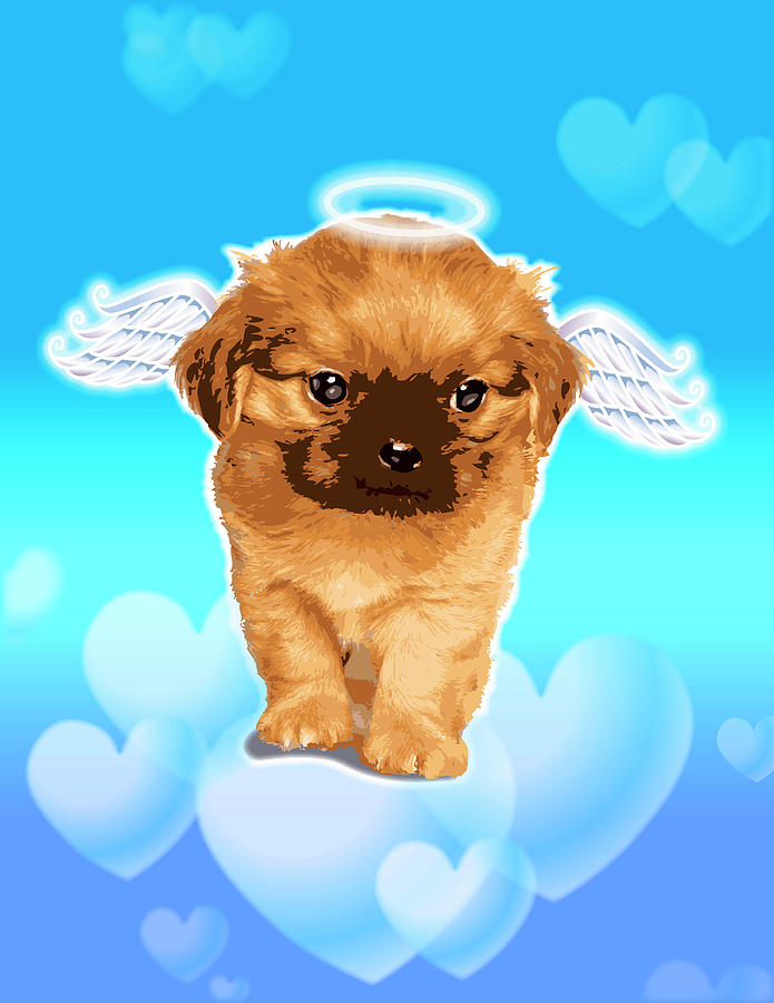 Puppy With Wings And Halo Digital Art