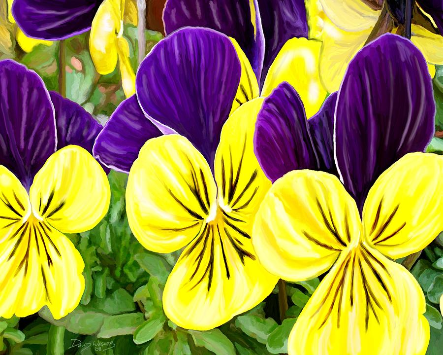 Purple and yellow pansies painting for Purple and yellow painting