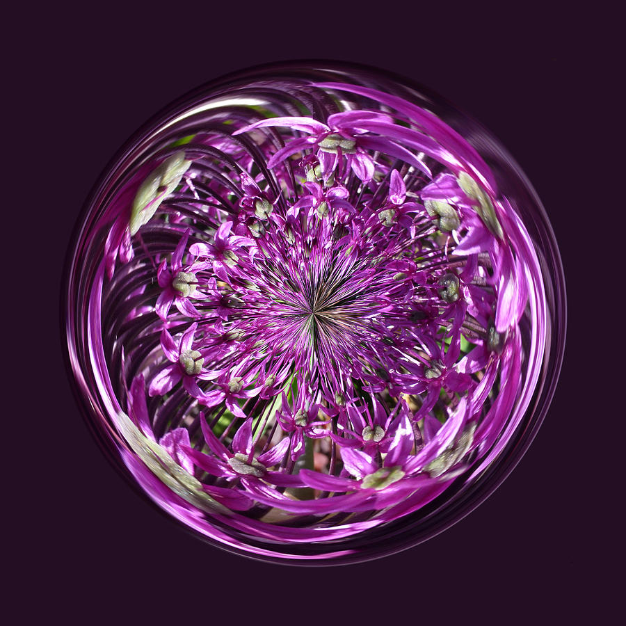 Purple Chaos Digital Art