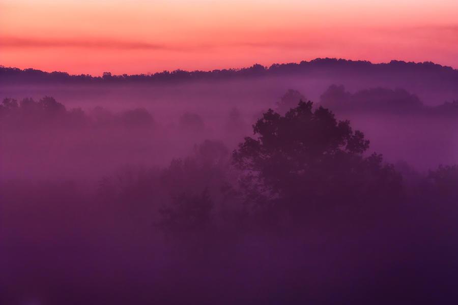Matt Trimble Photograph - Purple Dawn by Matt  Trimble