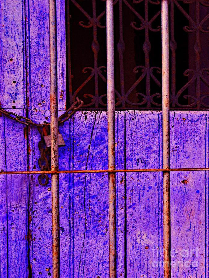 Purple Door By Michael Fitzpatrick Photograph