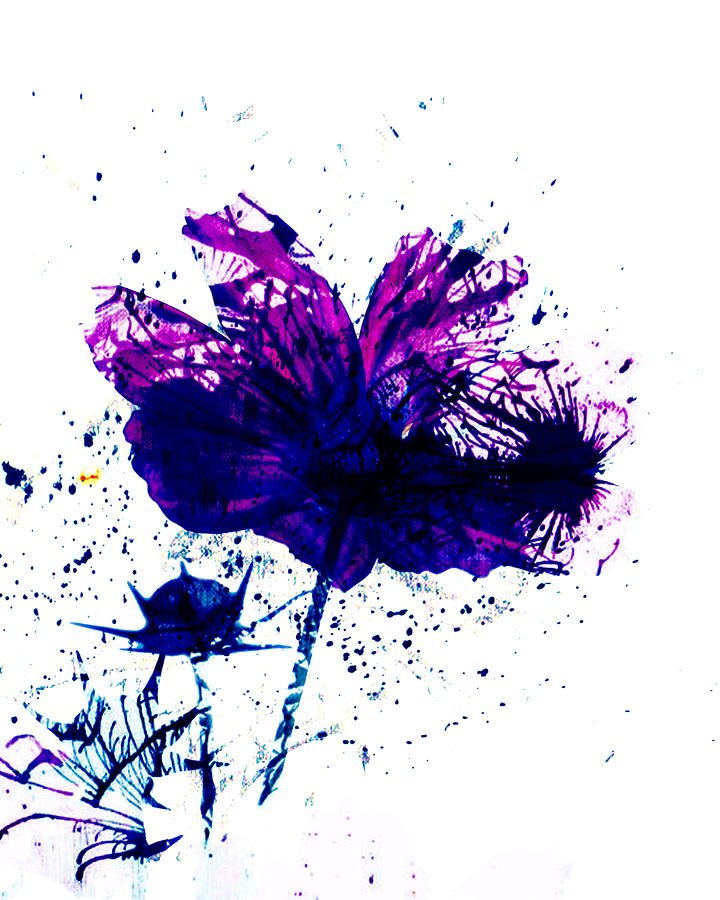Purple Mess Photograph  - Purple Mess Fine Art Print