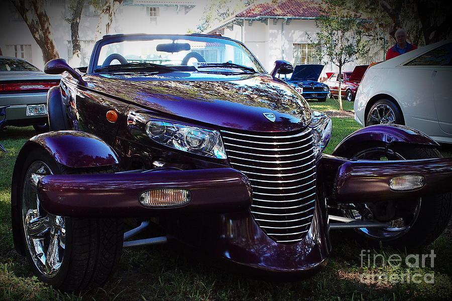Purple Purple Maple Syrple Photograph