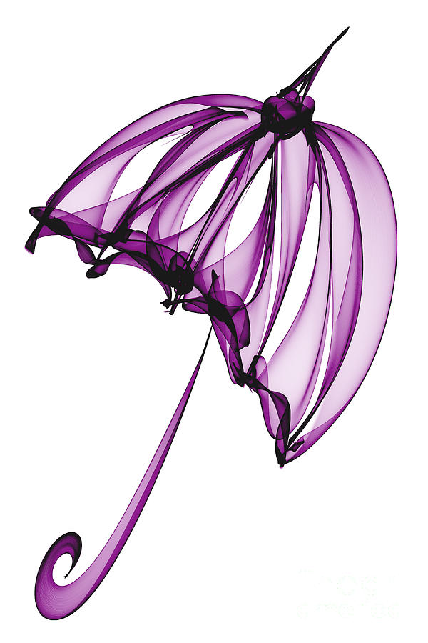 Purple Umbrella Digital Art  - Purple Umbrella Fine Art Print