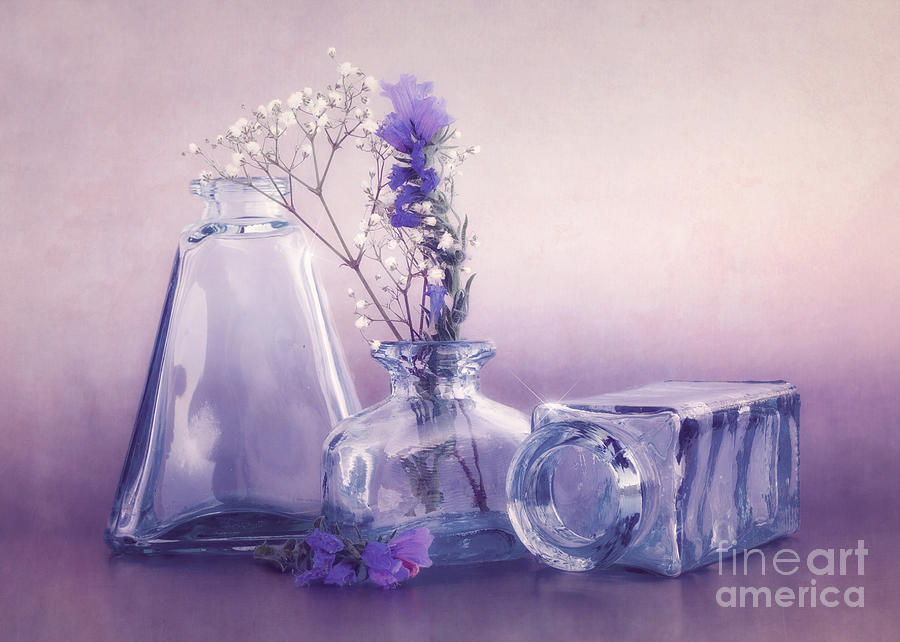Purple Vases Photograph  - Purple Vases Fine Art Print