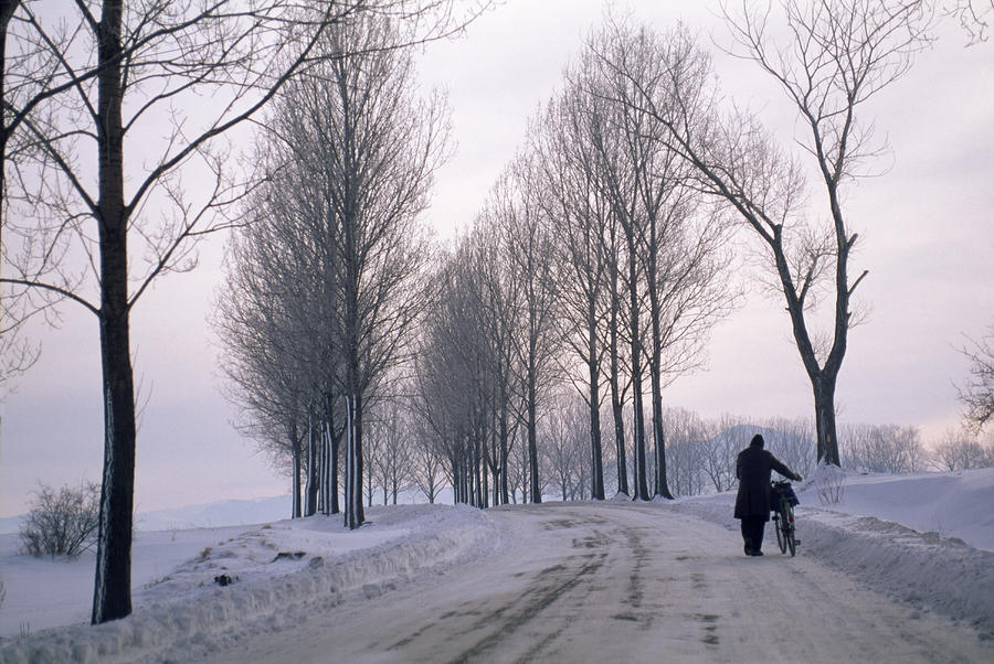 Pushing A Bike Along A Snow Covered Photograph